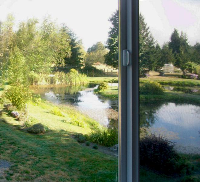 windowview01
