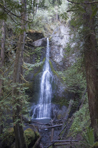 Marymere Falls by Lake Crescent