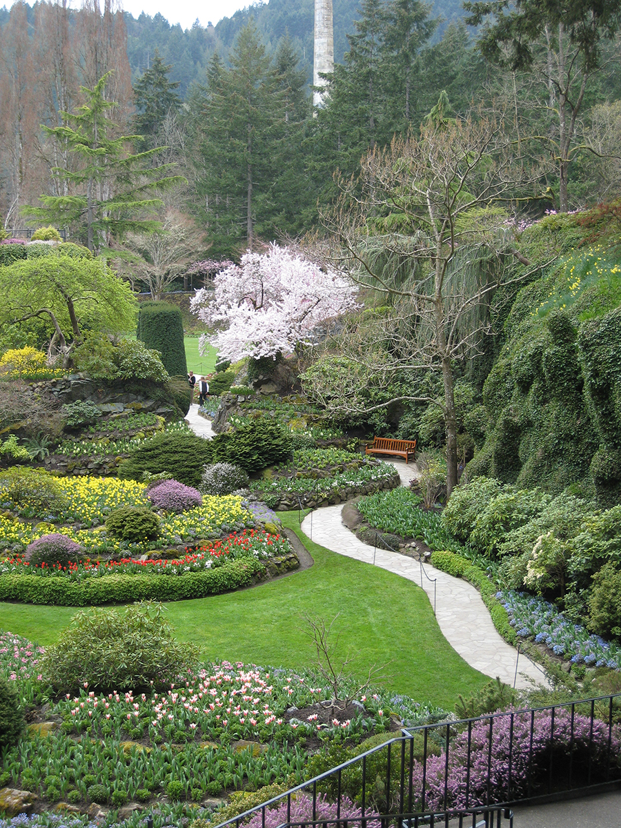 Victoria bc canada nelsons duck pond and lavender farm butchart gardens victoria bc thecheapjerseys Images