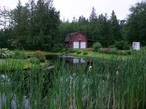 The rental cabin at Nelson's Duck Pond